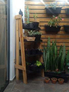 Repisa para plantas