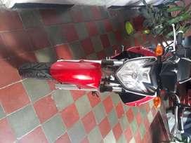 Yamaha YS250 Modelo 2.013