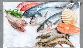 Delivery entrega a domicilio de Pescados y mariscos por mayor en alta cordoba y cofico