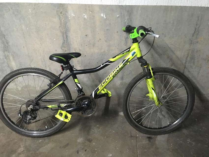Bicicleta ecobike 0