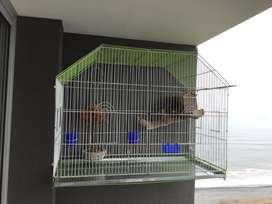 Jaula para aves grande