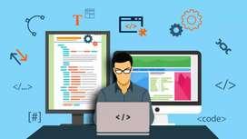 Busco empleo como programador web