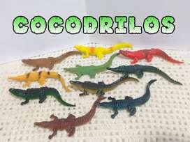 Colección de 10 Cocodrilos