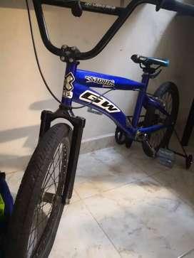 Bicicleta Gw Cross