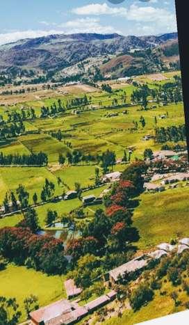 Venta de terreno-Cajamarca