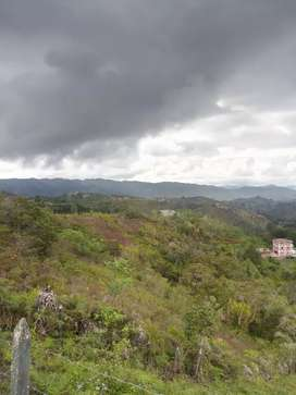 Espectacular lote de 11 mil metros San Vicente Ferrer