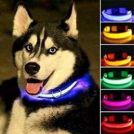 Collar led azul talla S para perro