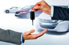 Alquiler de vehículo y transporte