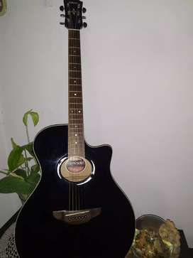 Yamaha Electroacústica Apx500