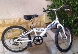 Bicicleta Giant Rodado 20