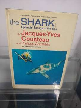 the Shark by  Jcarues y-