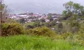 Lote de 17 hectáreas aproximadamente Iquira Huila