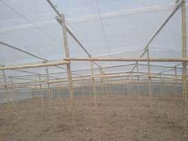 Invernaderos y cubiertas