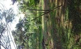 1 hectaria de finca  0997705148