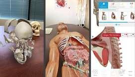 Enciclopedia Interactiva Human Anatomy Atlas 2020: Complete 3D Human Body v2020