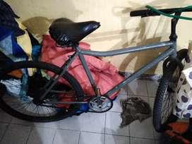 Bicicleta con detalles