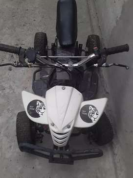 Mini cuatri 50 cc