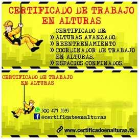 Certificate en Alturas
