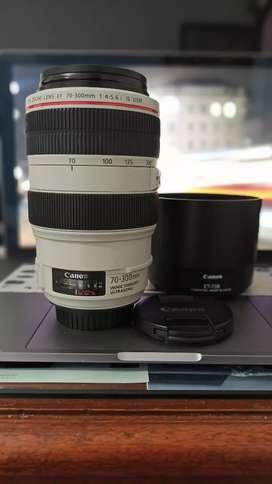 Lente Canon 70-300 serie L