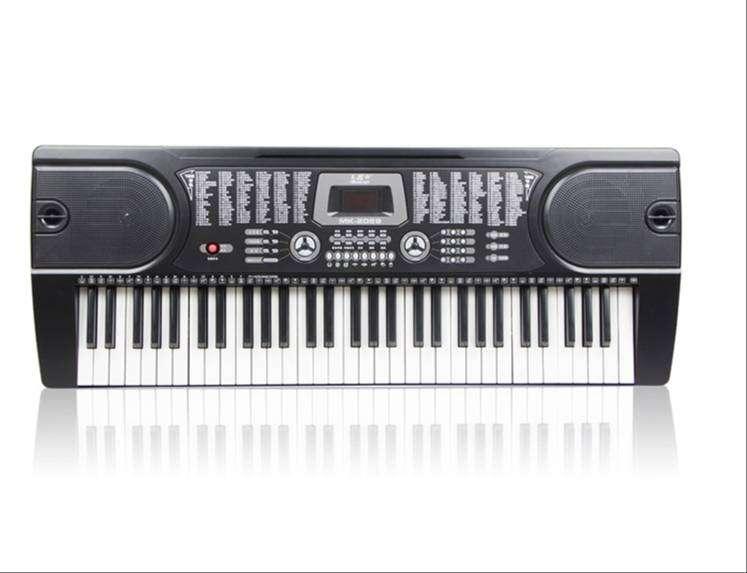 Teclado Organo Auto Didactico 61 Teclas 128 Ritmos 12 Demos 0