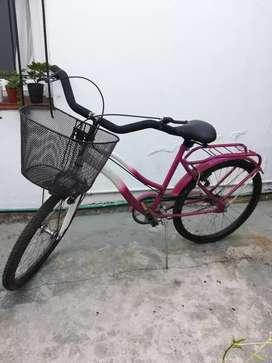 Bicicleta Olimpia. rodado 24