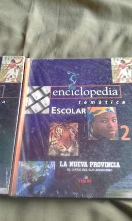 ENCICLOPEDIA TEMATICA ESCOLAR