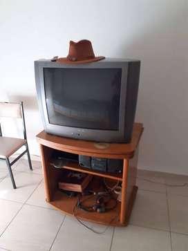 TV Philips mod.29pt458a/77, LEER BIEN EL AVISO