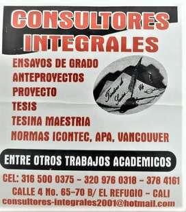 ASESORES EN TESIS Y REVISIÓN DE NORMAS