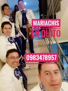 Mariachis en Quito la colmena Paulo VI San roque dos puentes