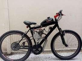 Bicicleta a motor 80cc bicimoto wt