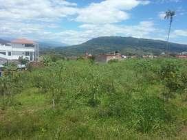 Vendo lotes con excelente ubicación en Oiba Santander.