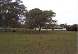 Campo Agrícola de 3300 Hectáreas (Zona San Martín Chaco)