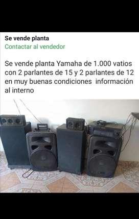 planta Yamaha precio negociable