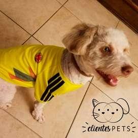 Camiseta de Colombia