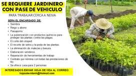 JARDINERO CON PASE DE VEHICULO