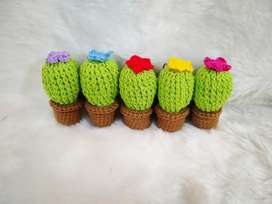 Llaveros cactus