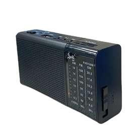 Radio R- 021 USB beck play ref 69