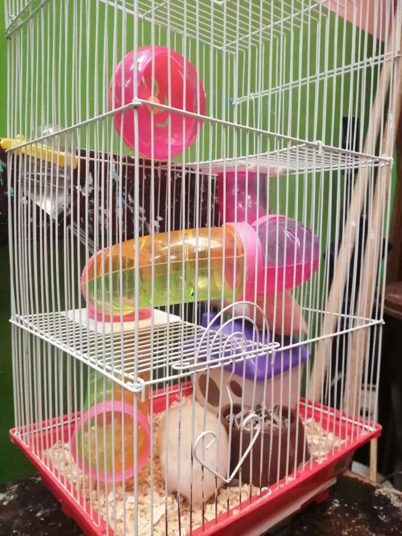 Vendo Jaula para hamsters 0