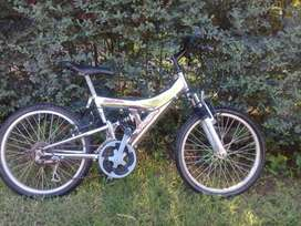bici cromada