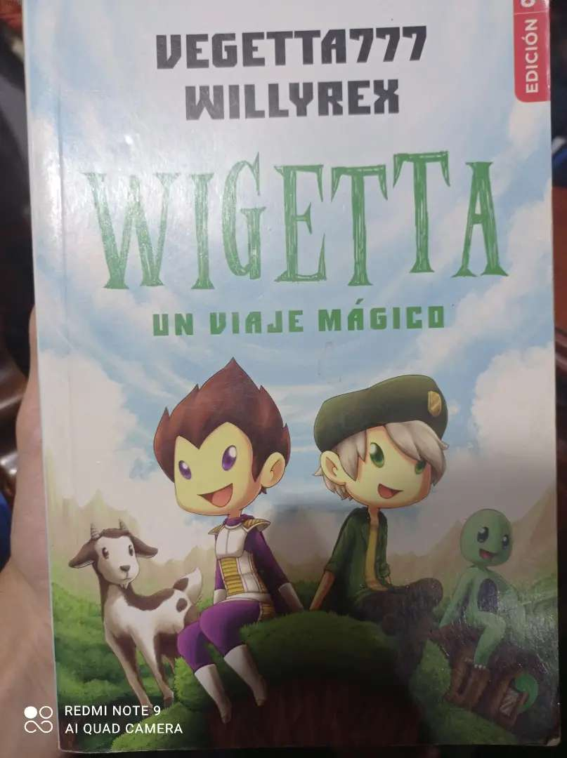 LIBRO DE WIGETTA
