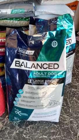 Vital can balanced large x20 kg adulto