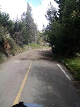 Terreno en bosque en Quero 5653.70m a 200metros d la cascada de junjun  33.000 ng y otra propiedad de 5485.50m junto