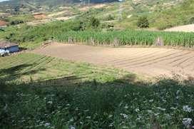 venta de terreno entre Marinilla y el Peñol- Antioquia