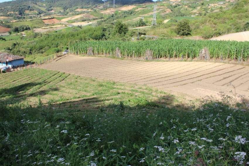 venta de terreno entre Marinilla y el Peñol- Antioquia 0