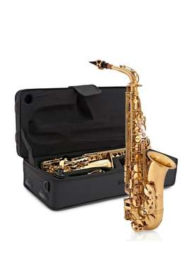 Saxofon alto dorado estuche boquilla NUEVOS Saxo Alto
