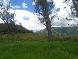 Vendo Terreno en Yunguilla 2hectáreas y media Santa Isabel