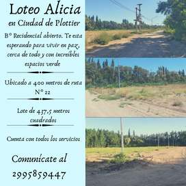 Vendo Lote en Plottier