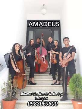 """Grupo de Camara """"Amadeus"""" Musica clasica en vivo"""