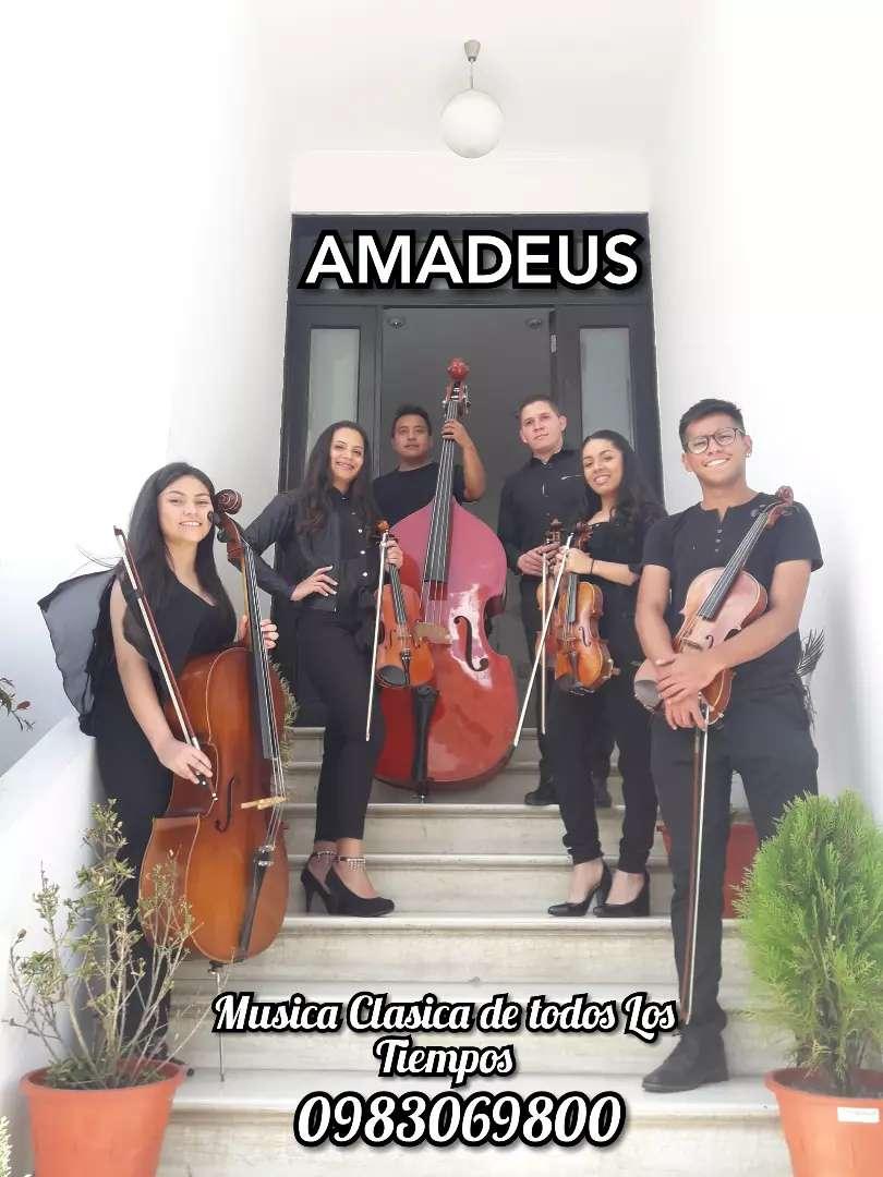 """Grupo de Camara """"Amadeus"""" Musica clasica en vivo 0"""