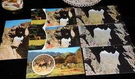 Tarjetas postales antiguas Sierra de la Ventana